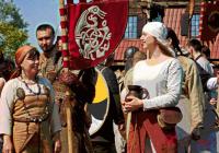 Фестивали Викингов